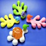珊瑚肥皂盘