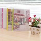 韩国文具青涩恋20孔卡夹 A4文件夹 NJ-023-21 红色花车