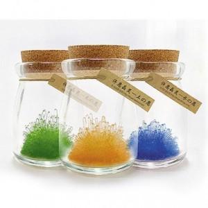 正品 DIY自种十二星座水晶许愿瓶 许愿晶灵御守护 土-朝气黄
