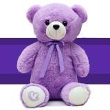 高级超大薰衣草玩具熊热水袋  充电圣诞小熊暖手宝