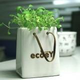 正品 创意桌面绿植手提袋植栽 陶瓷纸袋-心形草