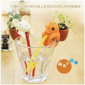 正品  创意迷你动物嘴巴吸水萌宠小盆栽小植栽草娃娃办公桌面礼品 小鸟