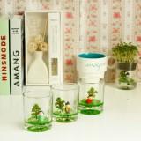正品 桌面创意绿植 童话杯栽培系列  阿牧