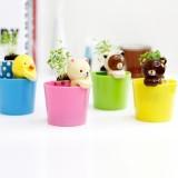 正品 创意办公室盆栽 迷你植物 植栽 背篓熊盆栽 棕色熊