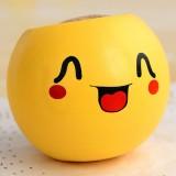 办公室迷你植物盆栽 青草种植栽培草头娃娃QQ表情-可爱 216个一箱