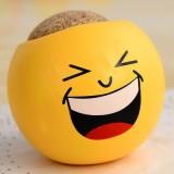 办公室迷你植物盆栽 青草种植栽培草头娃娃QQ表情-大笑 216个一箱