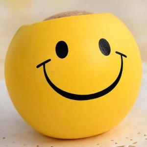 办公室迷你植物盆栽 青草种植栽培草头娃娃QQ表情-笑脸 240个/箱
