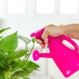 家用手压式两用喷壶浇花壶 塑料园艺喷雾器 洒水浇水壶 蓝色