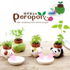 创意可爱陶瓷摆件 创意迷你吸水绿植花卉盆栽(吸吧客) 青蛙
