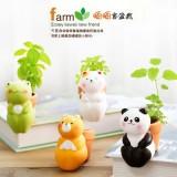 创意可爱陶瓷摆件 创意迷你吸水绿植花卉盆栽(晒晒客) 小熊