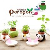 创意可爱陶瓷摆件 创意迷你吸水绿植花卉盆栽(吸吧客) 小猫