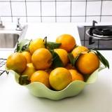 创意荷叶形水果盘塑料盘子糖果盘大号干果盘 北欧绿 350个/箱